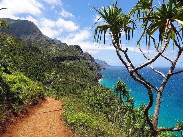 Hawaii. Bild von Kathy VanDeventer auf Pixabay
